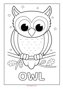 Owl Printable Coloring - Drawing Pages