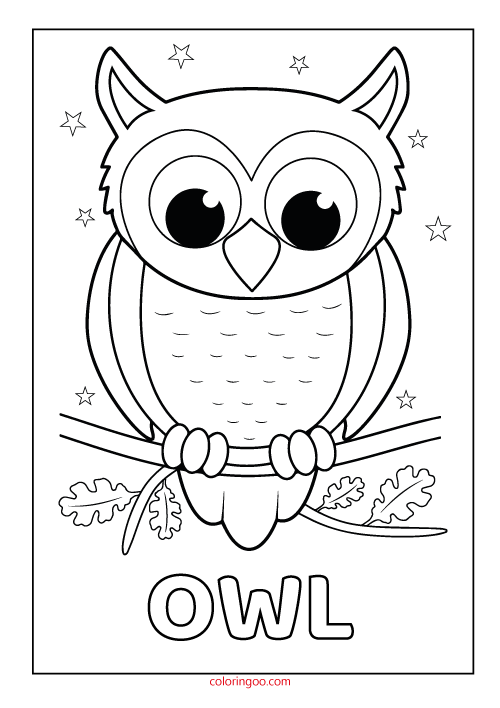owl printable coloring drawing pages