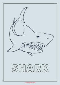 Printable Shark Coloring PDF Pages for Kids