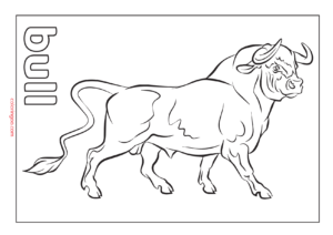 Printable Bull Coloring Page (PDF) for Kids