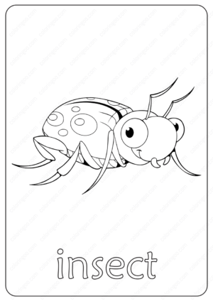 Printable Insect Coloring Page - Book PDF