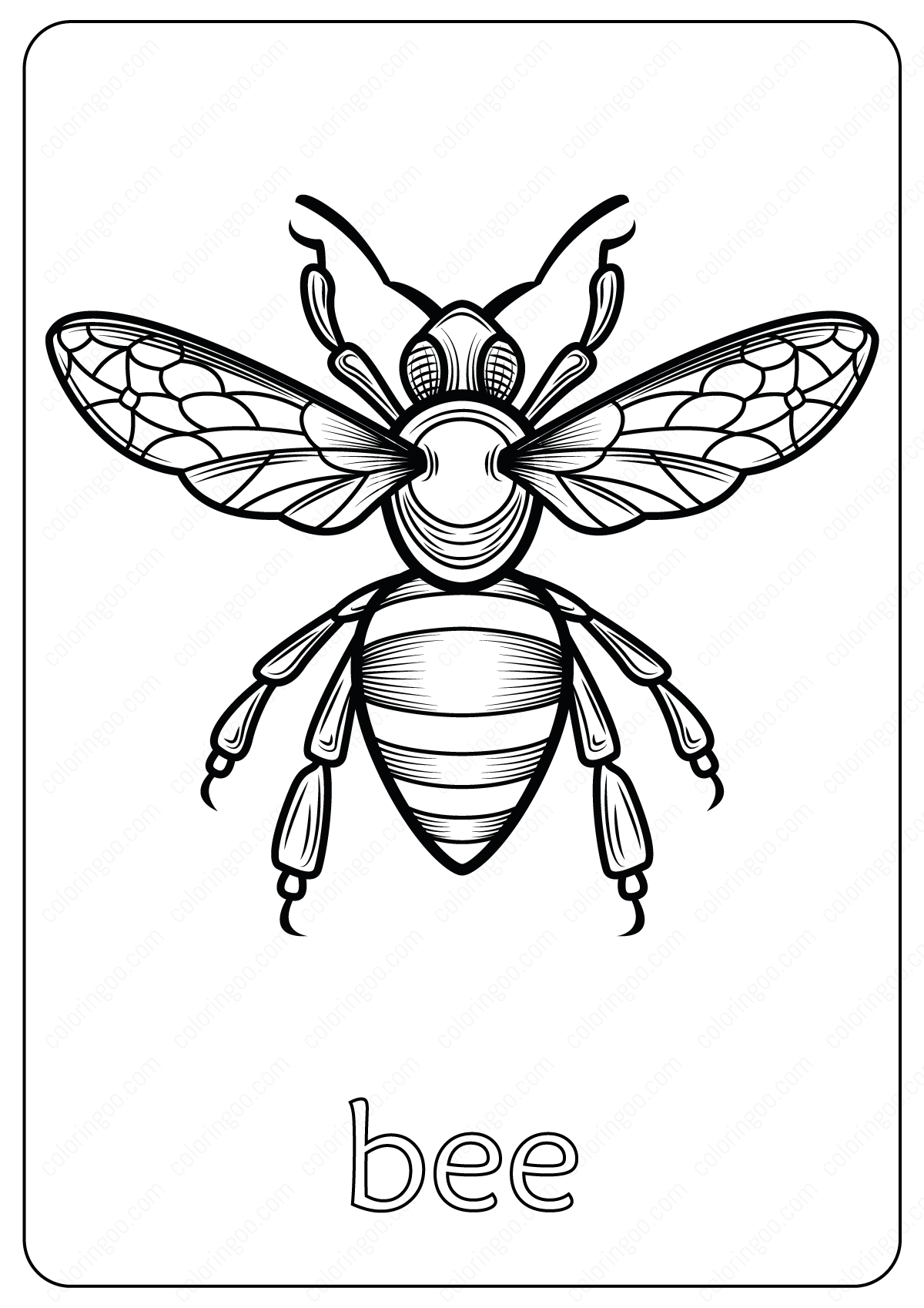 Animals Bee Coloring Pages Book
