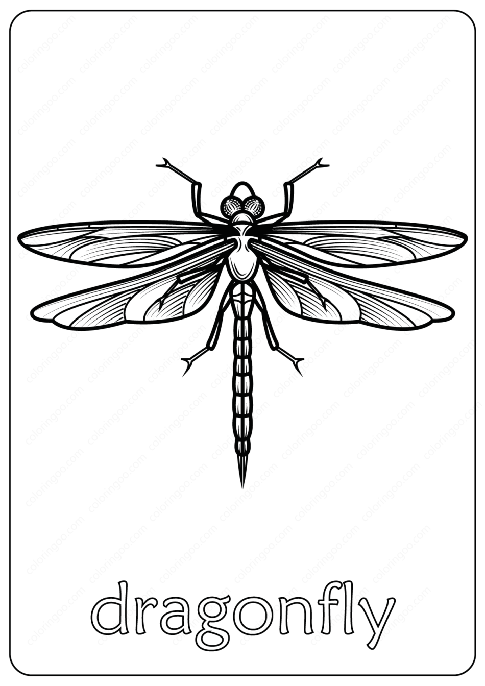 Animals Dragonfly Coloring Pages Book