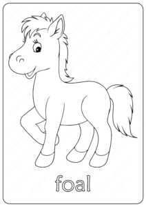 Free Printable Cute Foal Coloring Pages