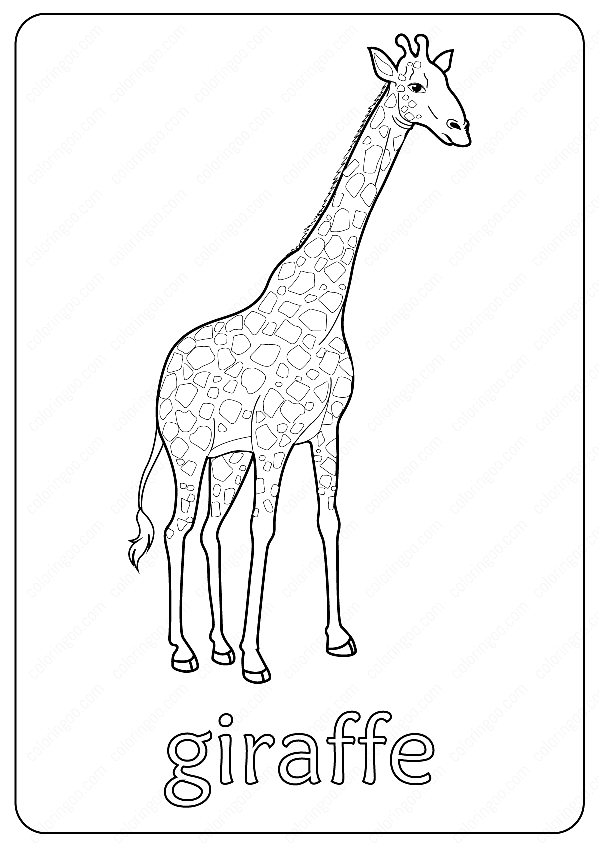 Animals Giraffe Coloring Pages Book