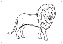 Free Printable Lion Outline Coloring Page