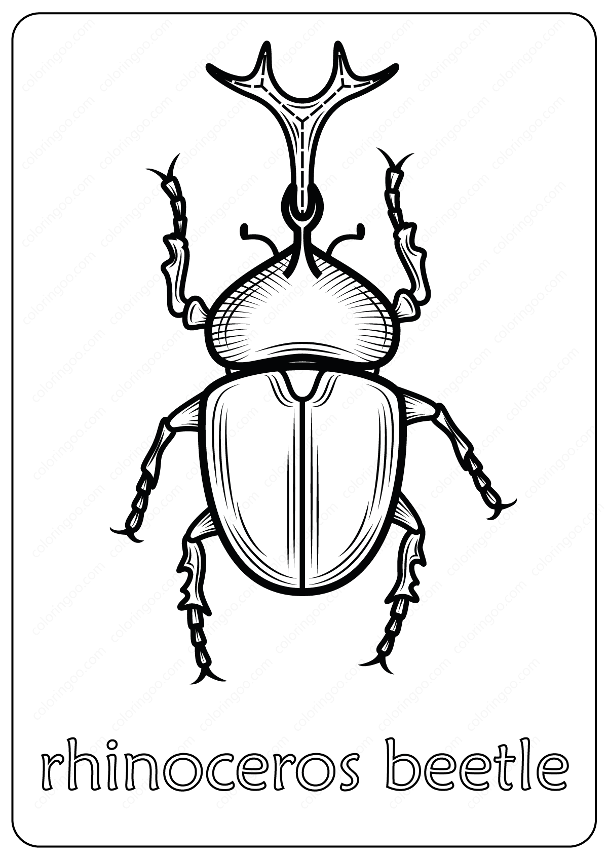 Rhinos Coloring Pages - Coloring Home | 1698x1200