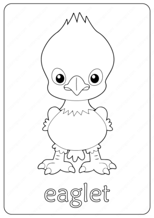 Free Printable Eaglet Outline Coloring Pages