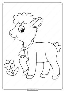 Printable Baby Lamb Pdf Coloring Page