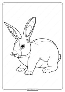 Printable Baby Rabbit Pdf Coloring Page