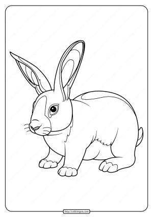 Printable Baby Rabbit Pdf Coloring Page