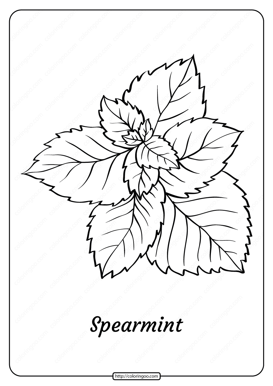 Free Printable Spearmint Outline Coloring Page