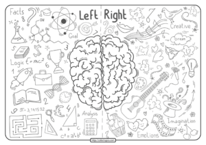 Free Printable Brain Lobes Pdf Coloring Pages