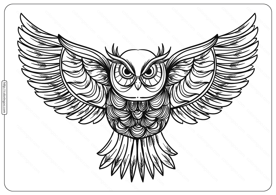 Free Printable Owl Animal Coloring Page - 006