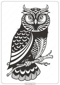 Free Printable Owl Animal Coloring Page - 008