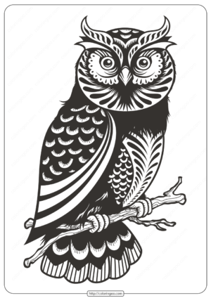Free Printable Owl Animal Coloring Page - 008