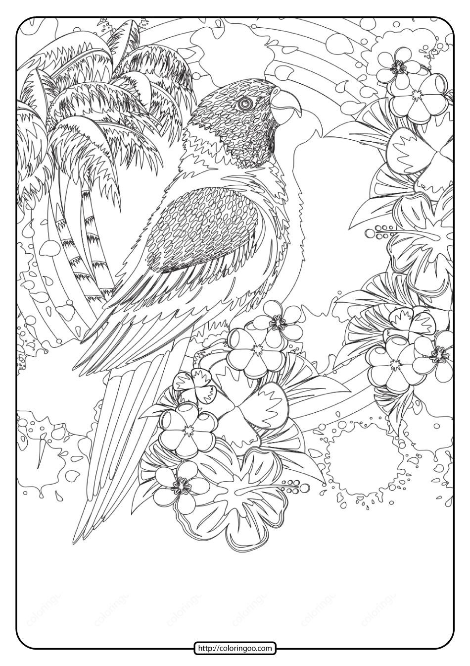 Free Printable Tropical Bird Pdf Coloring Page
