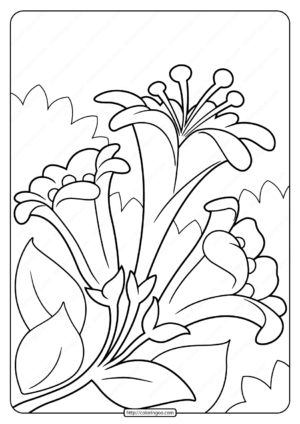 Free Printable Easter Lillies Pdf Coloring Page