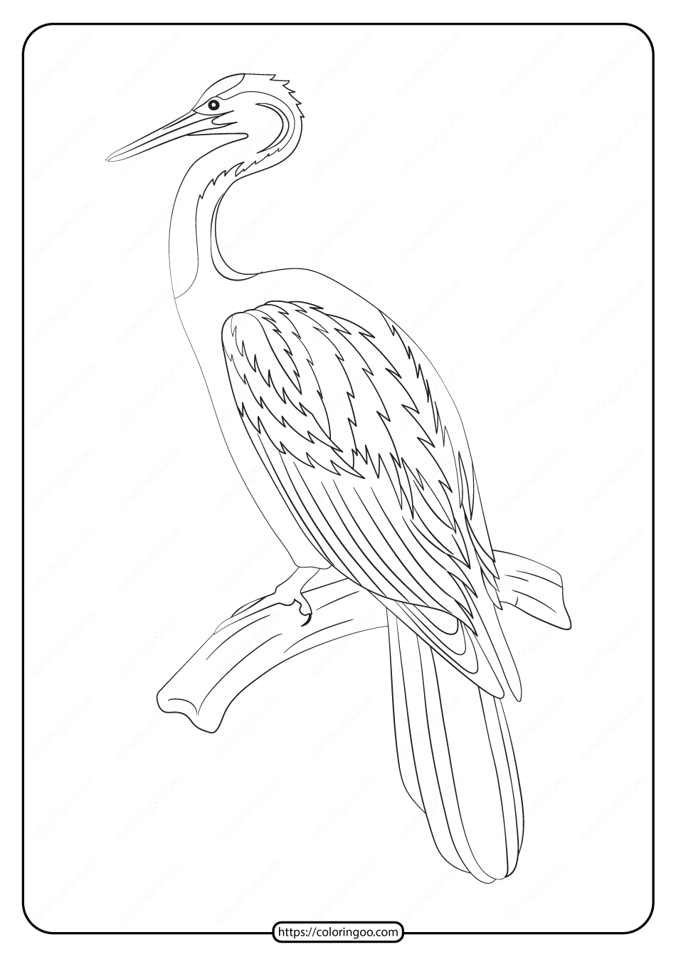Free Printable Animals Bird Pdf Coloring Pages 18