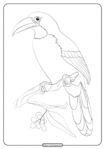 Free Printable Animals Bird Pdf Coloring Pages 19