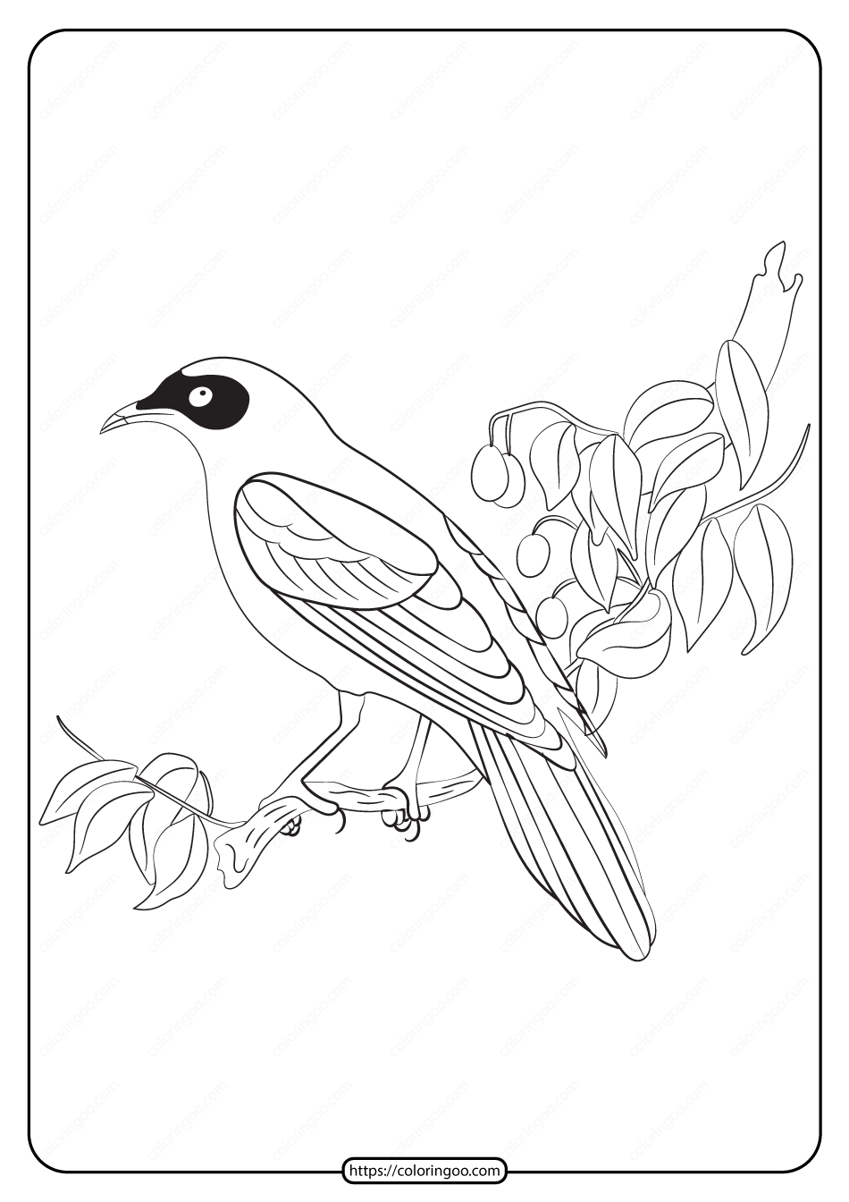 Free Printable Animals Bird Pdf Coloring Pages 20