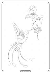 Free Printable Animals Bird Pdf Coloring Pages 23