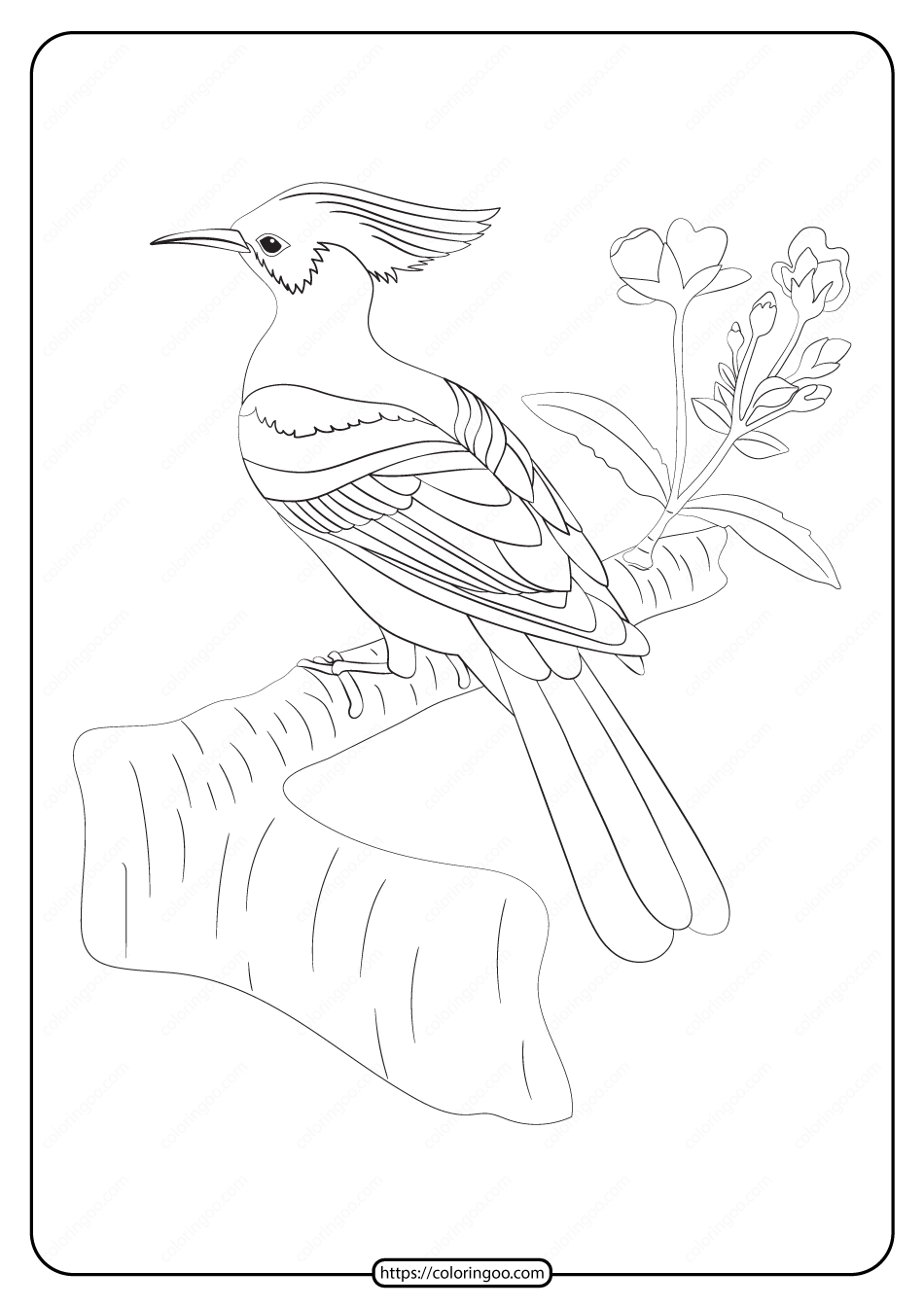 Free Printable Animals Bird Pdf Coloring Pages 25