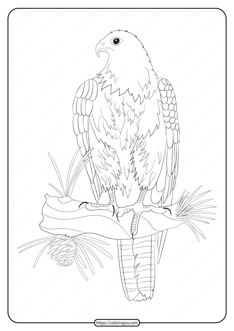 Free Printable Animals Eagle Pdf Coloring Page