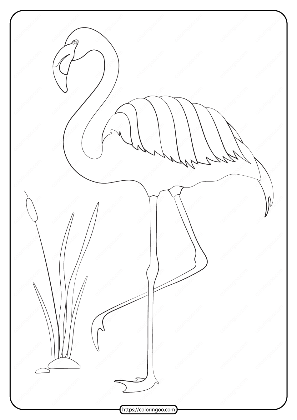 Free Printable Animals Flamingo Pdf Coloring Page