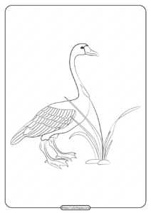 Free Printable Animals Goose Pdf Coloring Page