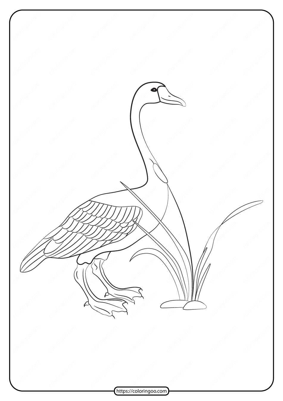 Free Printable Animals Goose Pdf Coloring Page