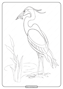 Free Printable Animals Heron Pdf Coloring Page