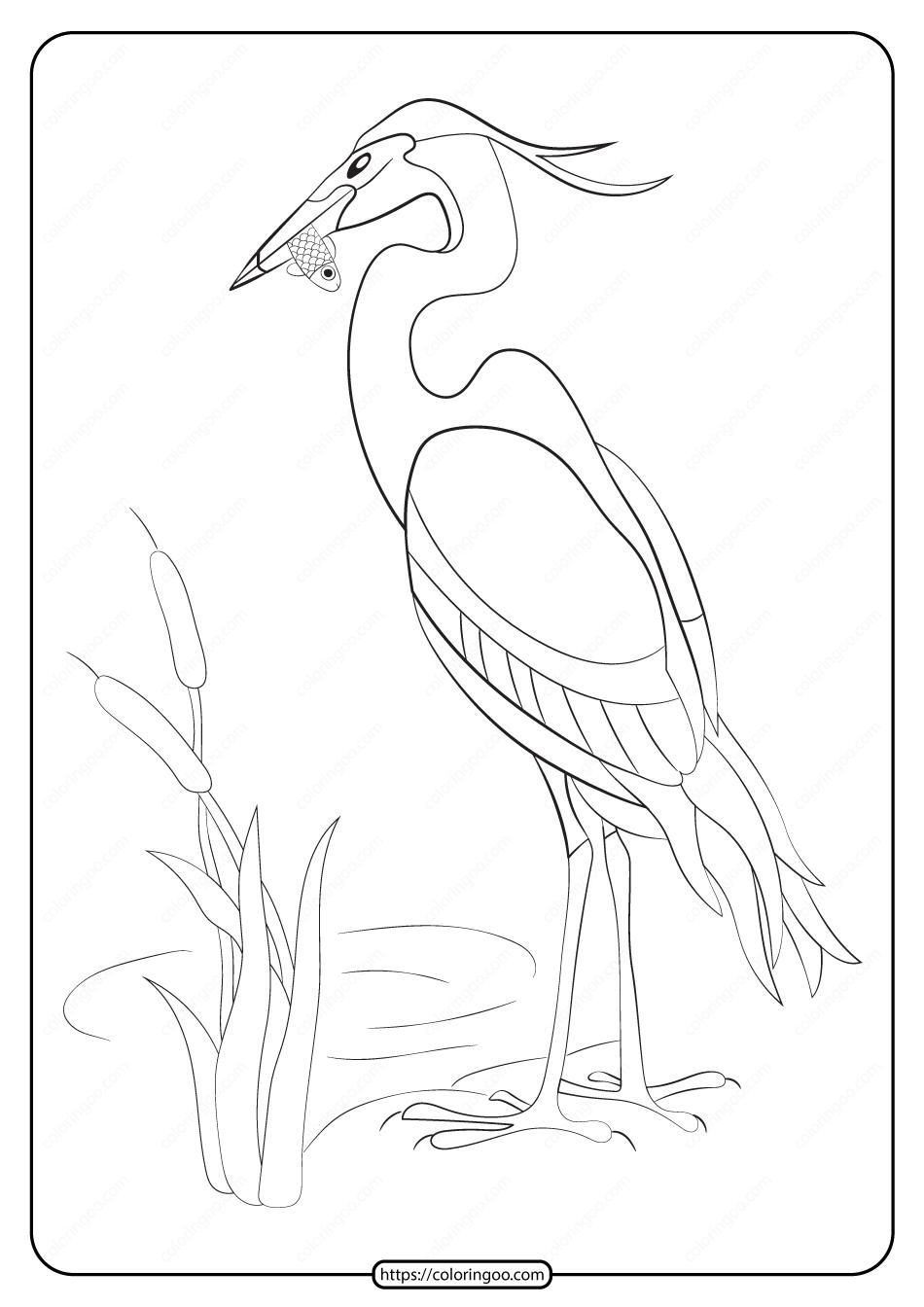 Free Printable Animals Heron Pdf Coloring Page