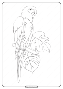 Free Printable Animals Parrot Pdf Coloring Page