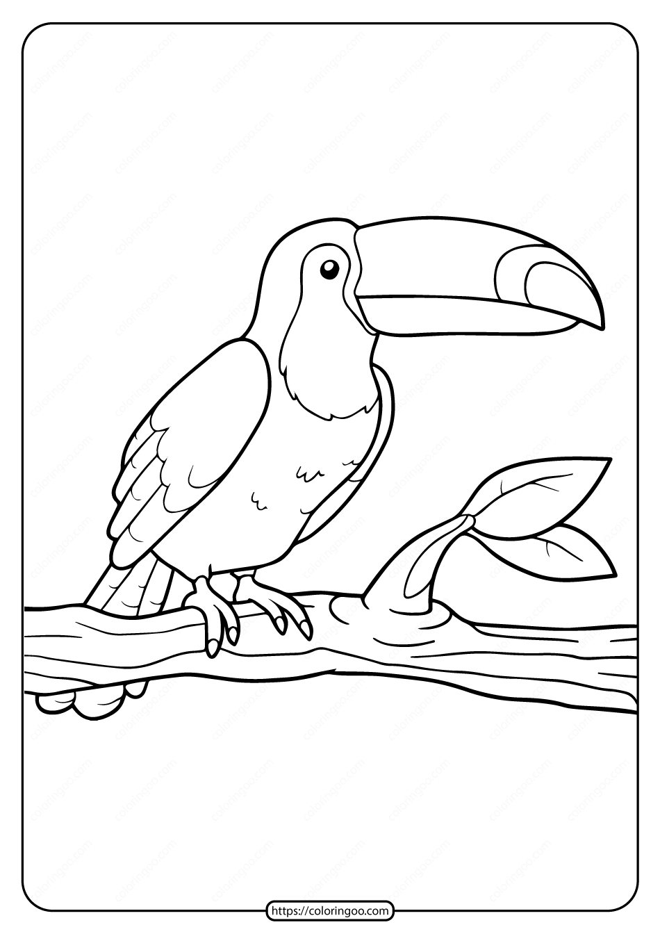 Free Printable Animals Toucan Pdf Coloring Pages