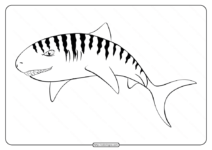Printable Animal Outline for Shark Coloring Page