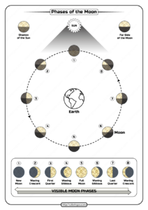 Free Printable Phases of the Moon Pdf Worksheet
