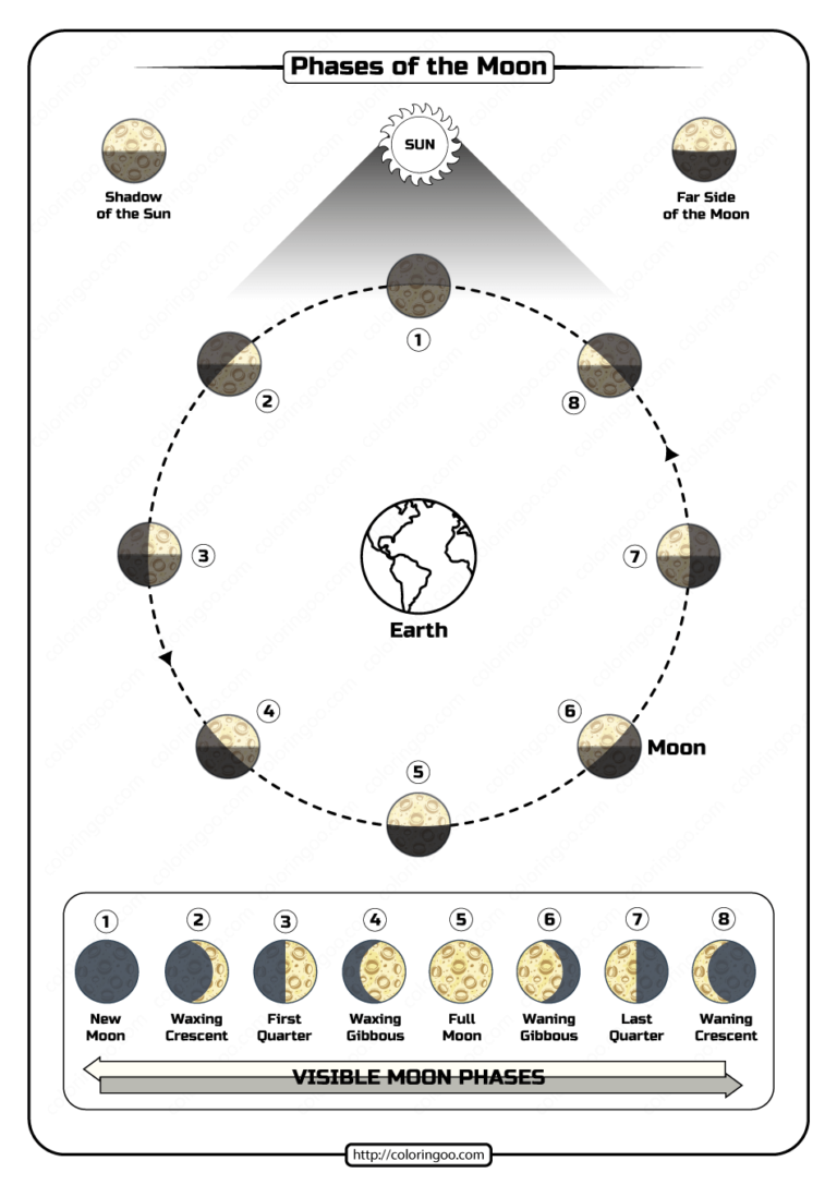 Free Printable Phases of the Moon Pdf Worksheet Pertaining To Moon Phases Worksheet Pdf