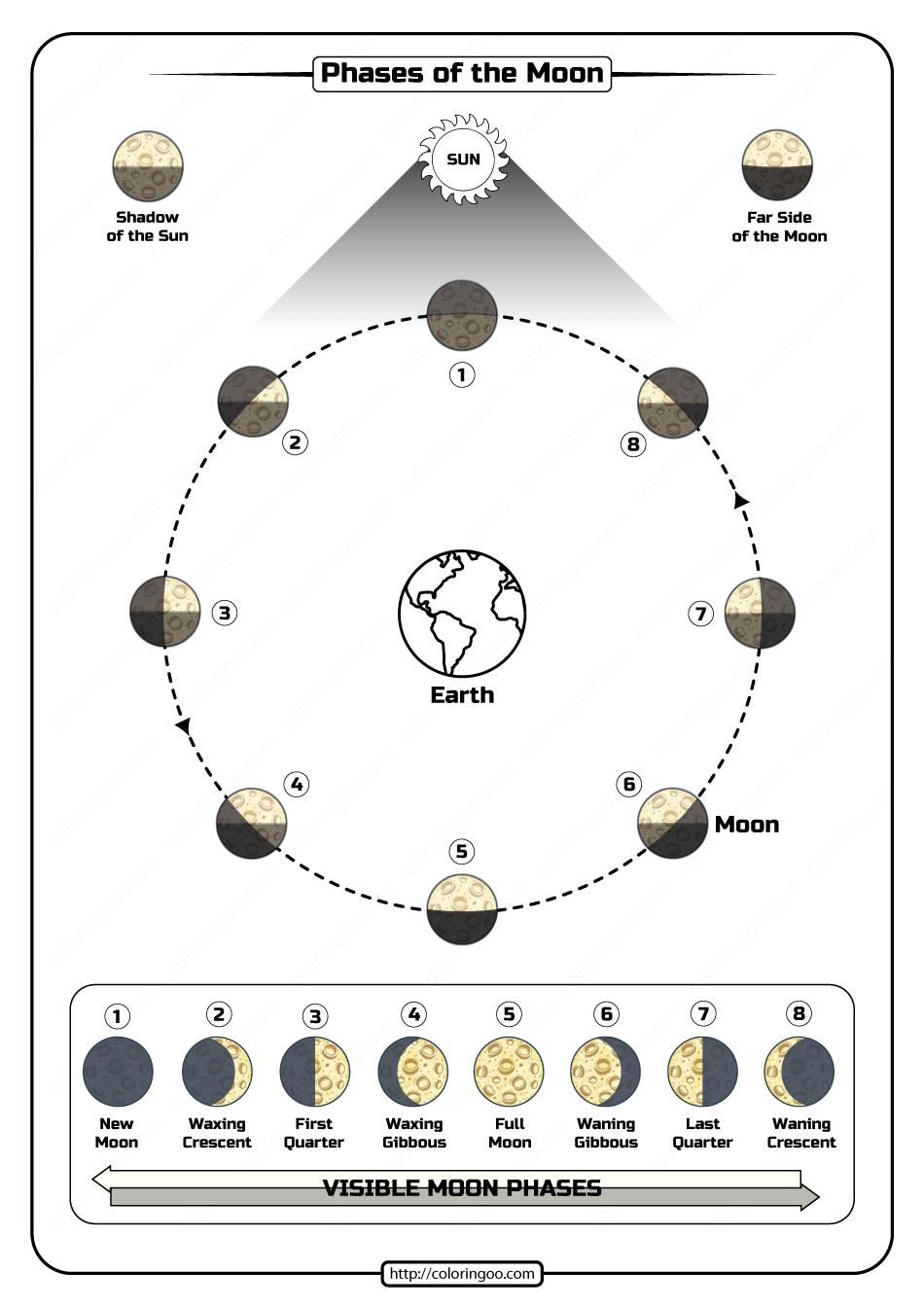 Free Printable Phases of the Moon Pdf Worksheet