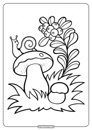 Snail on the Mushroom Coloring Pages