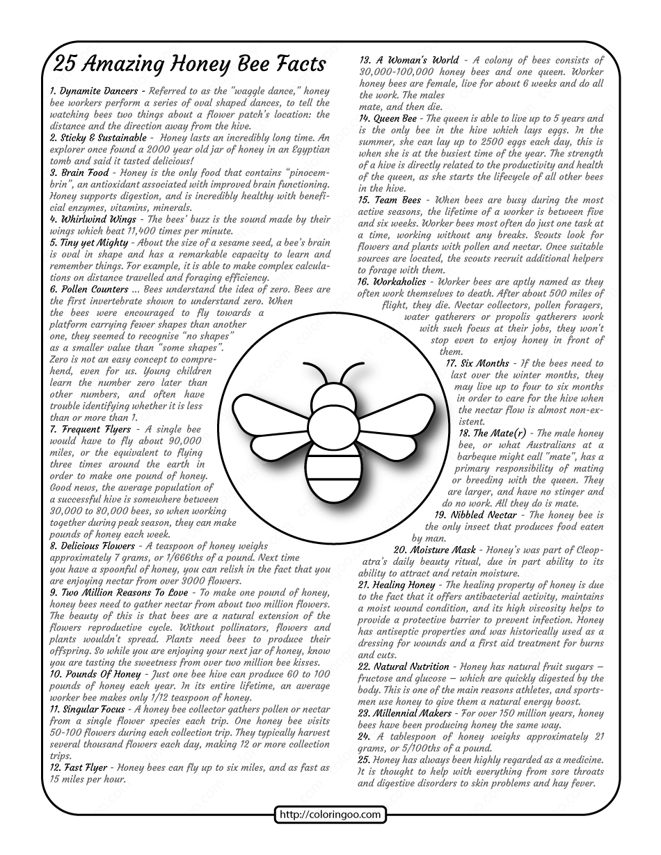 25 Amazing Honey Bee Facts Worksheet