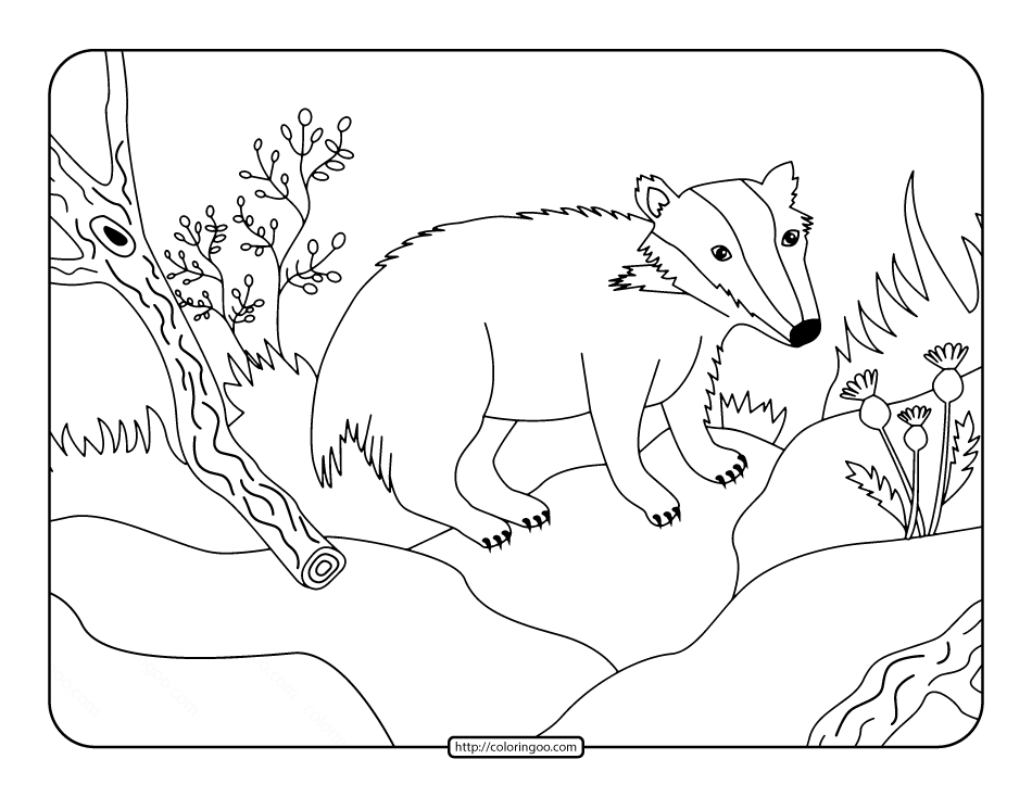 Badger in the Forest Coloring Page
