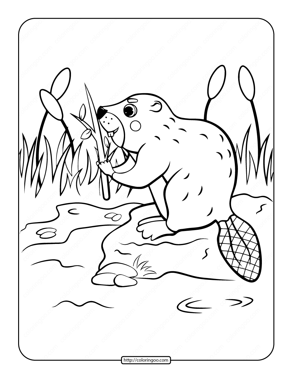 Beaver in the Riverside Coloring Page