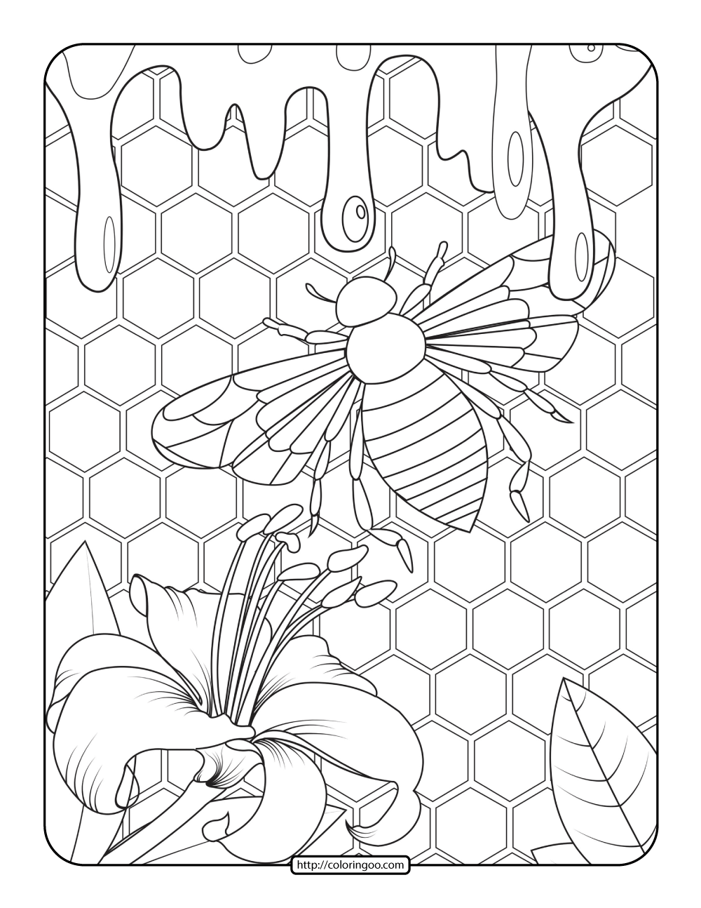 Bee and Honey Adult Coloring Pages
