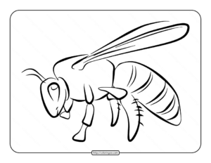 Bee Coloring Page for Kids