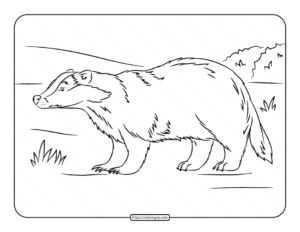 European Badger Coloring Page