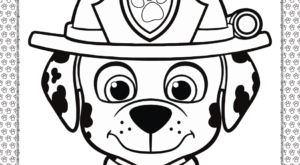 Printable Paw Patrol Marshall Head Coloring Page