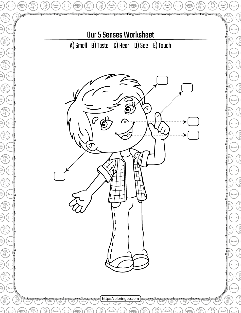 Our 5 Senses Pdf Worksheet