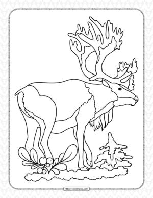 Printable Old Deer Coloring Page