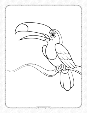 Cute Toucan Coloring Pages
